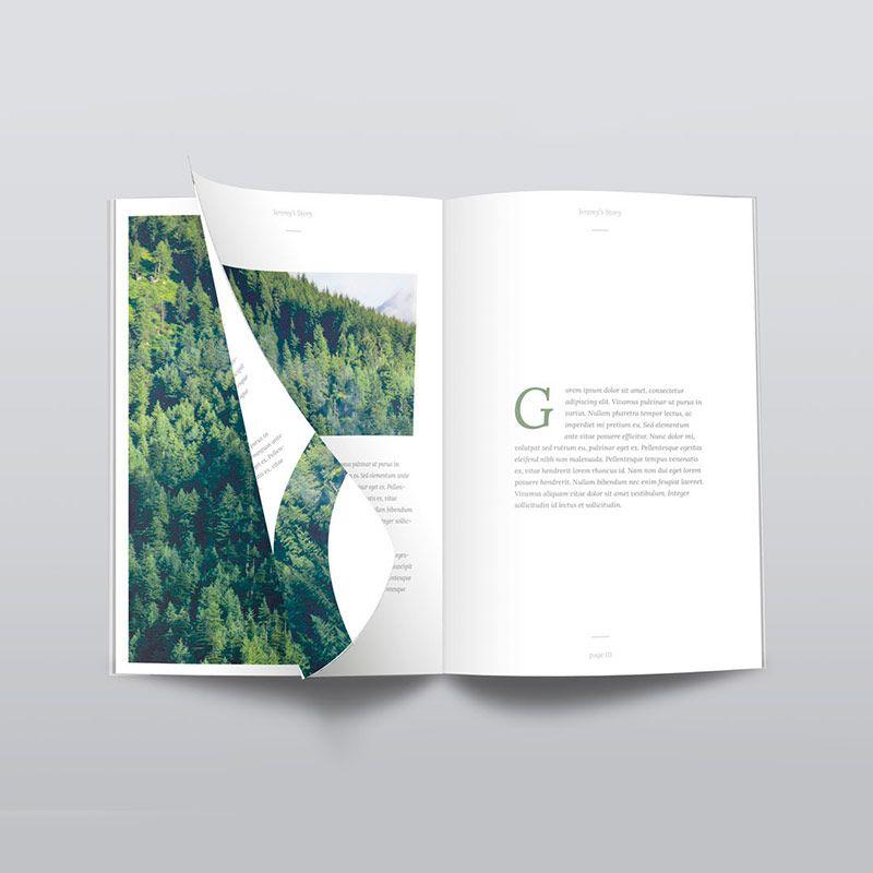 unanime-creativos-catalogos