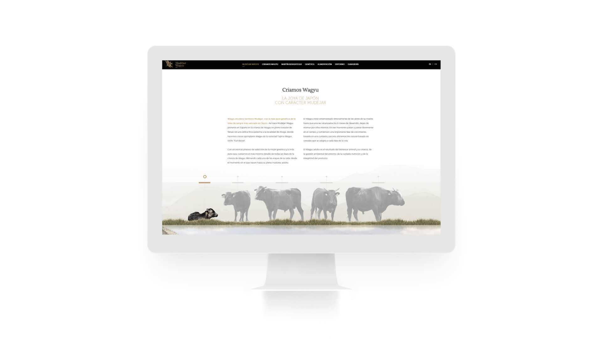 proyecto-mudejar-web
